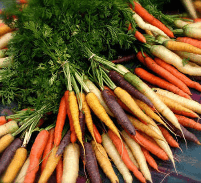 TGB carrots heirloom