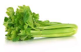 TGB celery