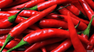 TGB chillies red