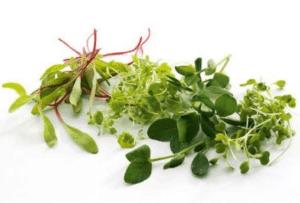 TGB micro herbs mixed