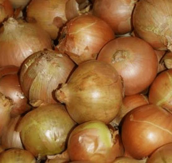 TGB onion brown
