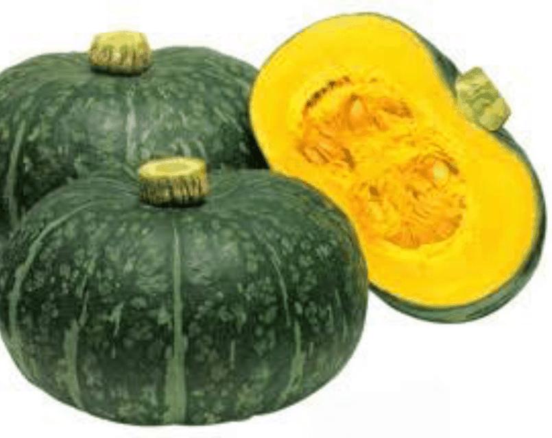TGB pumpkin japanese