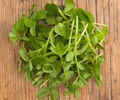 TGB snow pea tendrils