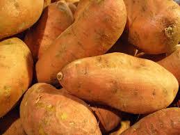 TGB sweet potato