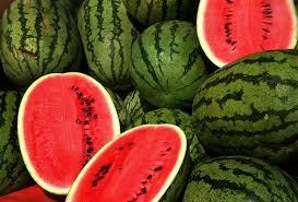 TGB watermelons