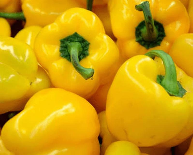TGB yellow capsicum