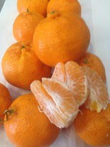 TGB Mandarins Donnybrook