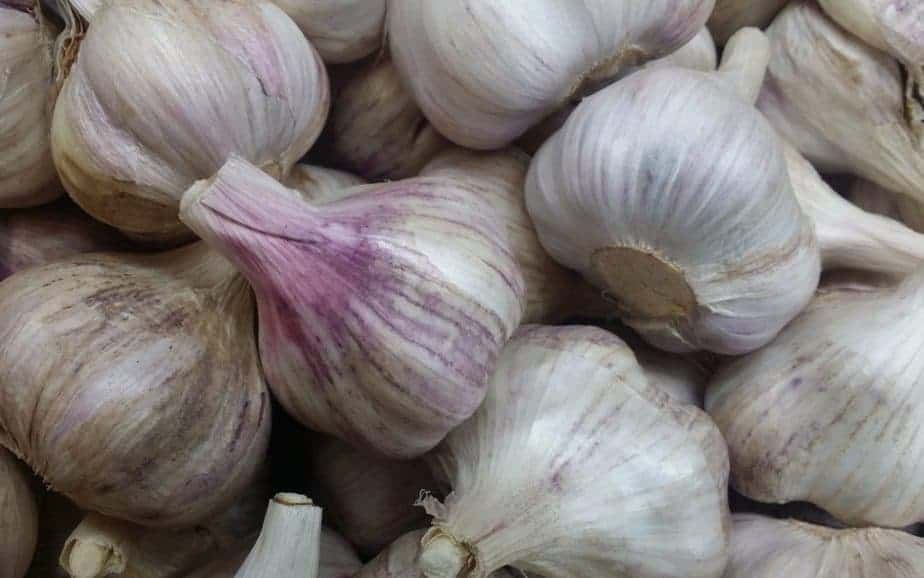 Fresh WA garlic