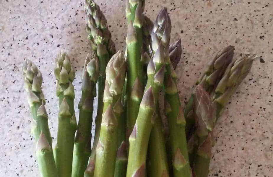 Torbay Asparagus, Gourmet Escape inspired recipe ideas!
